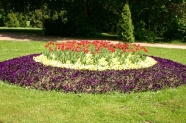 34-Blumen Stadtpark