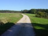 31-Feldweg