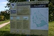 17-Hainberg