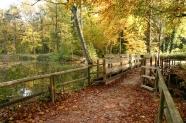43-Impressionen Park