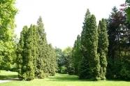 35-Stadtpark Impressionen