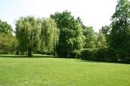 38-Stadtpark