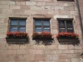 11-Blumenfenster